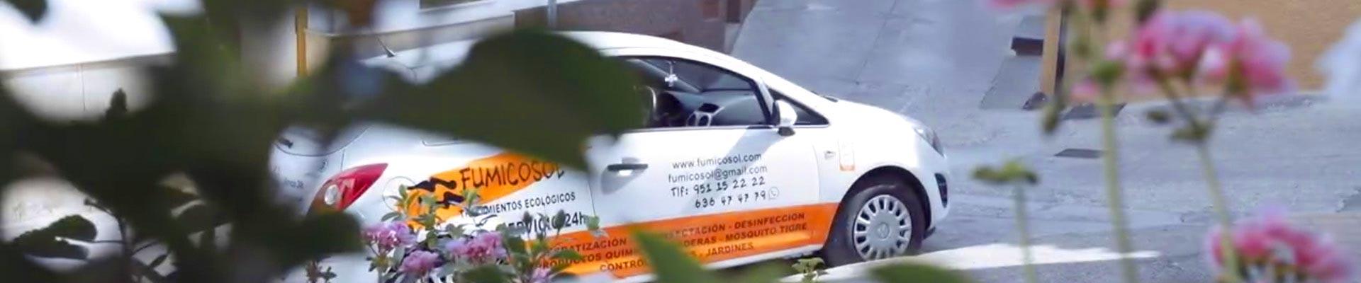 empresa de control de plagas en fuengirola